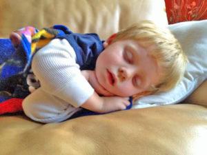 jameson sleeping