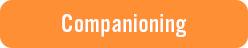 Companiong_Button